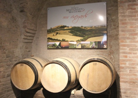 Monte Oliveto vineyards sign