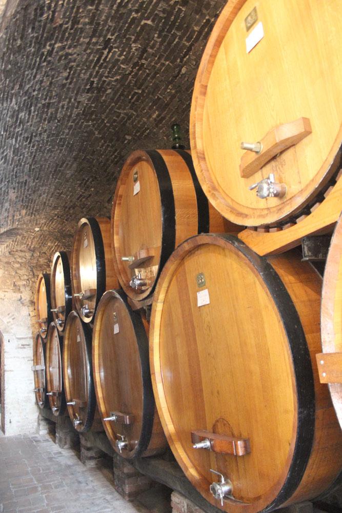 Montepulciano Contucci wine barrels