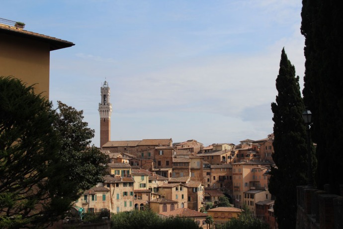 Siena view of rooftops, bell tower