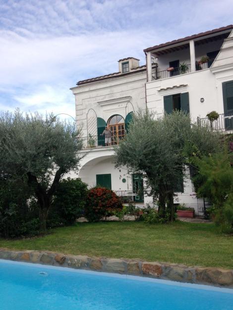 Erca and pool, vert