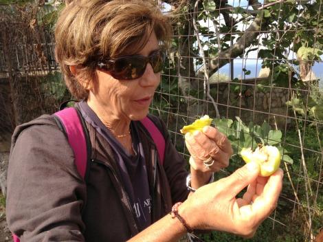 Massa Lucia with figs
