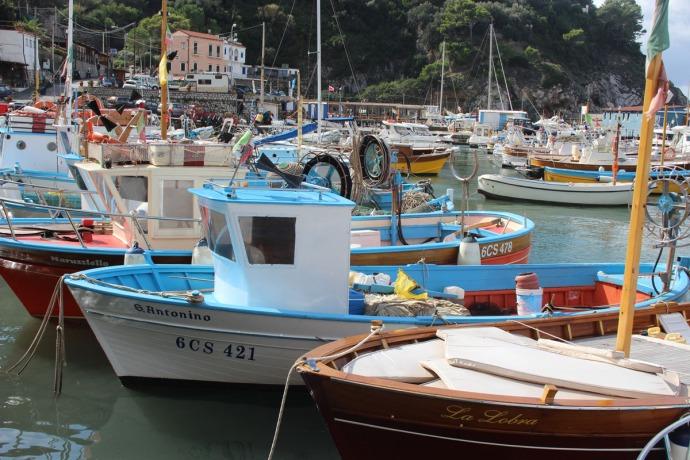 Massa marina boat clsup