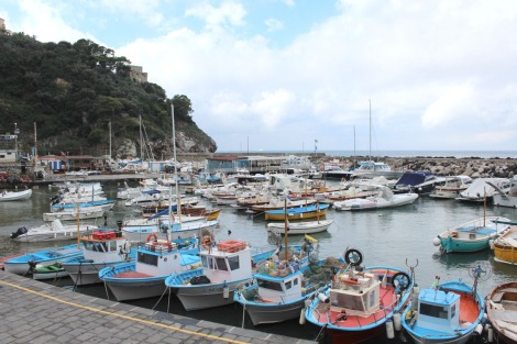 Massa marina boat lineup