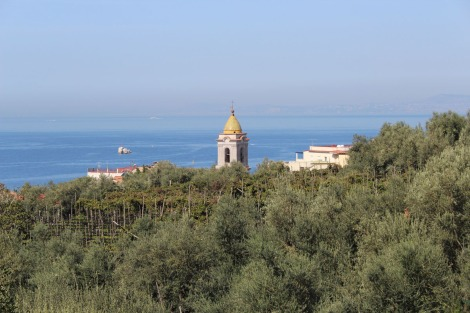 Massa marina church top, olives, water view