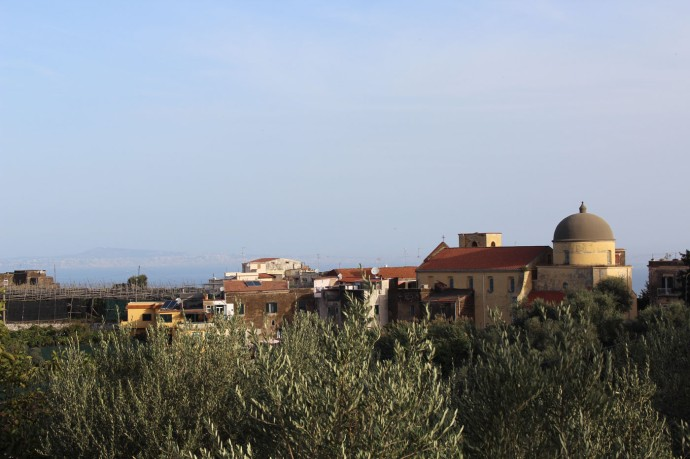 Massa olives, church, rooftops