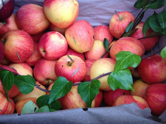 Massa produce shop apples