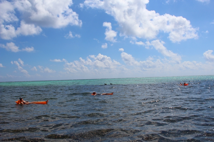 Soliman Bay floaters