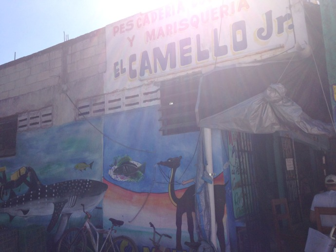 El Camello jr wall painting