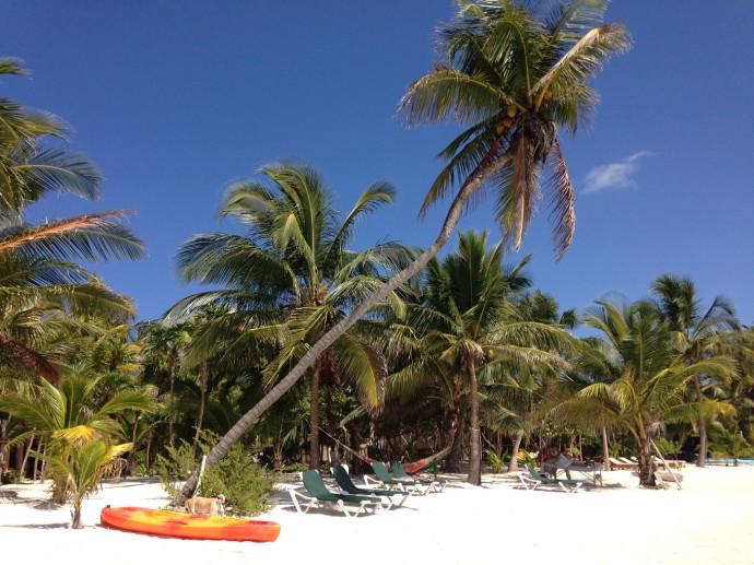 Nah Luum palm, kayaks, chaises, blue sky
