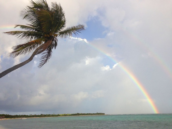 Soliman Bay palm, big rainbow