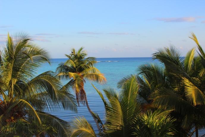 Soliman palm view, pretty water big