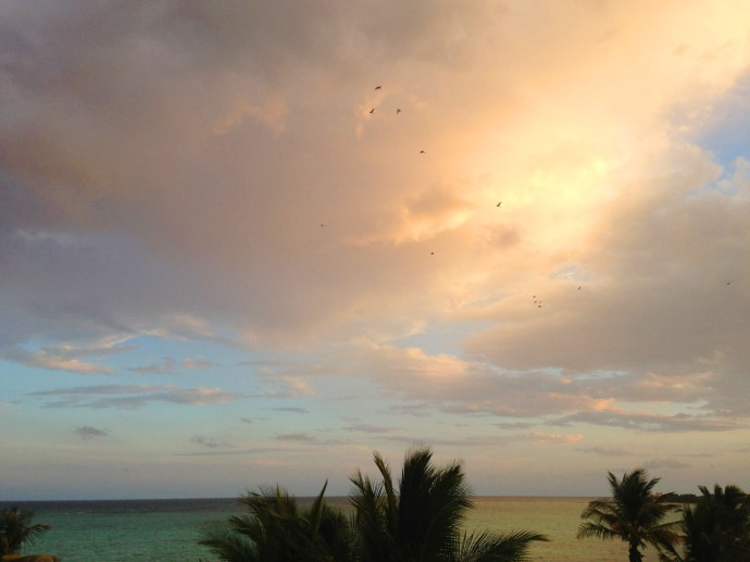Soliman sunset, birds in clouds