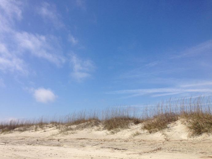 Tybee Island beach oats