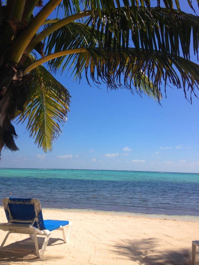 Uxibal chaise, palm, water vert