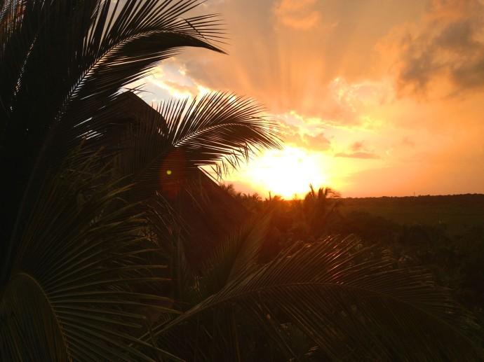 Uxibal palapa top, sunset burning, palms