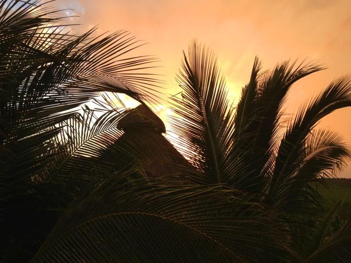 Uxibal palapa top sunset silhouette