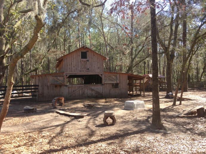 Daufuskie Farm goat barn & yard