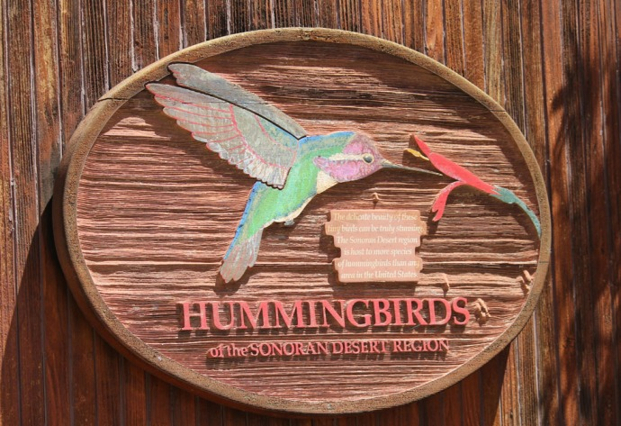 Desert Museum hummingbird sign