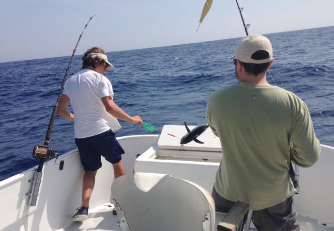 Albatross Fleet, Ilia, Sumner tuna