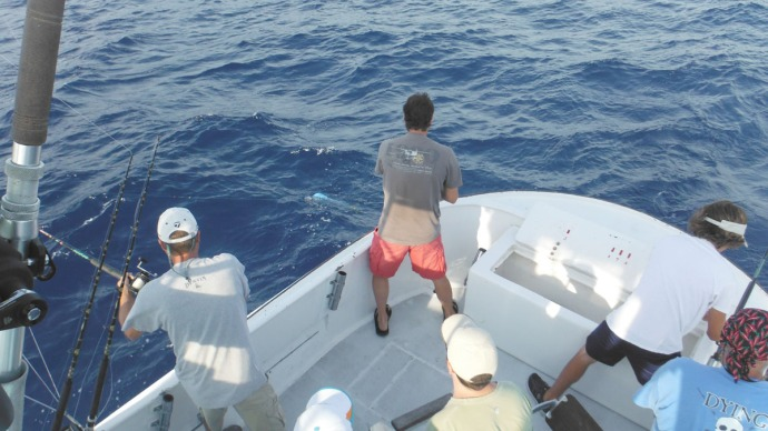 Albatross Fleet, Wally, Mike pulling mahi
