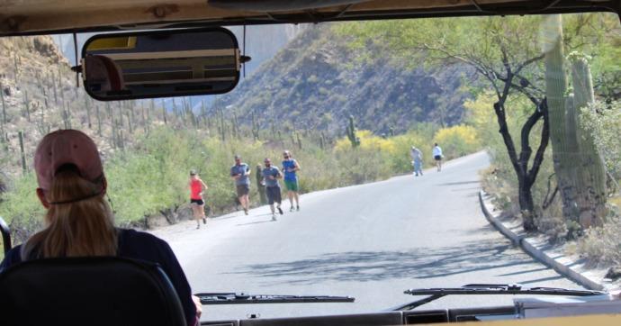 Sabino Canyon joggers