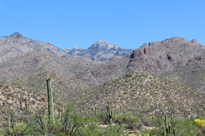 Sabino Canyon mountains