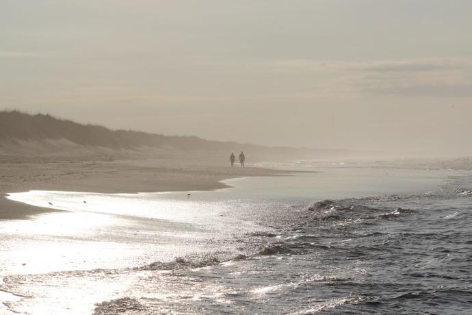 Frisco, hazy beach morning walkers