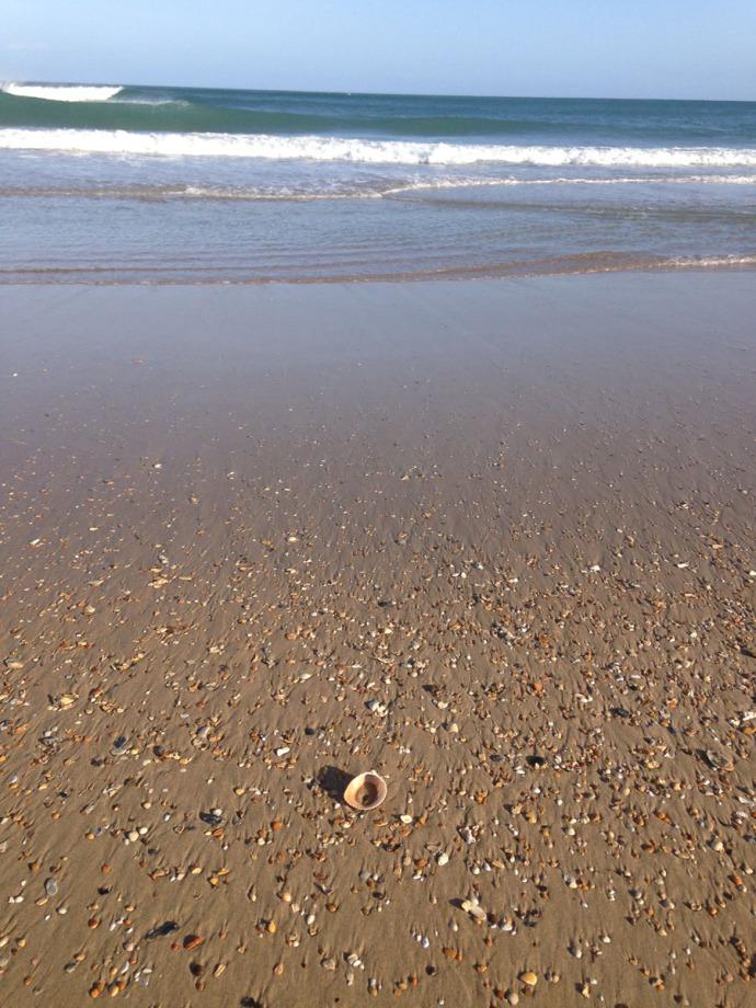 Frisco, vert beach shot