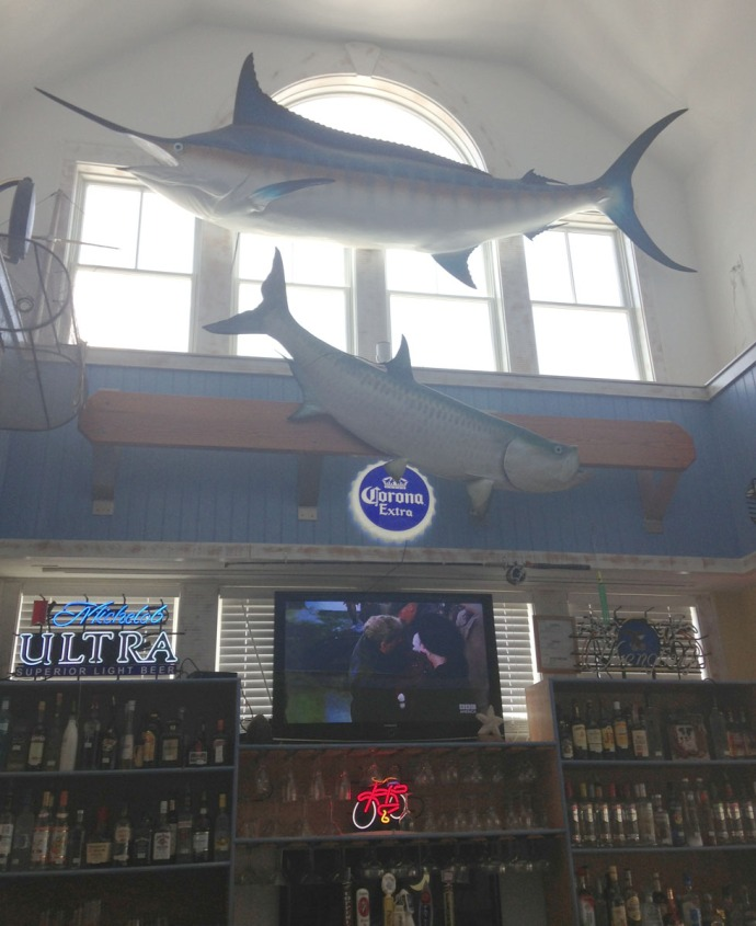 Hatteras, Billfish bar and fish