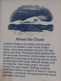Jockey Ridge dune info sign