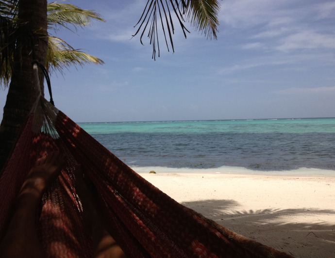 hammock's edge, aqua water
