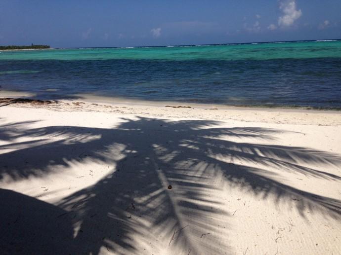 Palm shadow on sand, aqua water