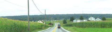Amish Country, banner, fields, buggy