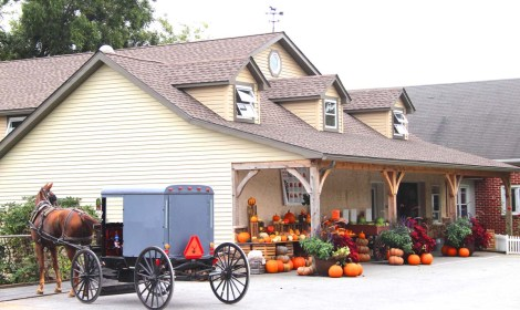 Amish Country, Beilers Farm bldg, horse & buggy
