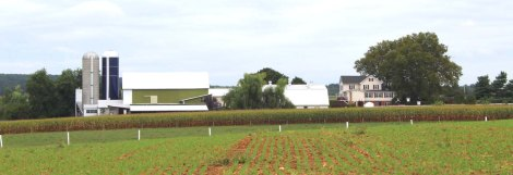 Amish Country, farm scene 2