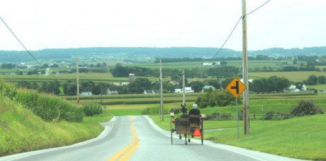 Amish Country, horse & buggy on road