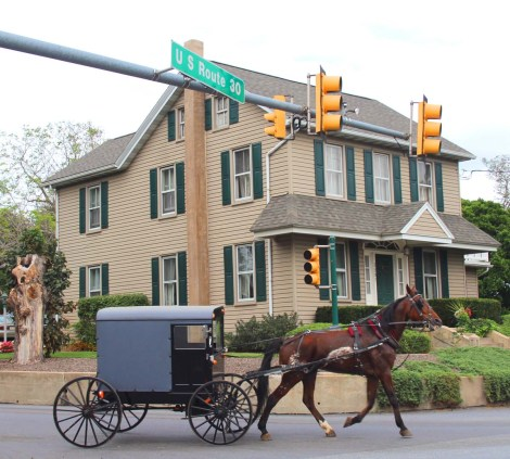 Amish Country, horse & buggy, US 30