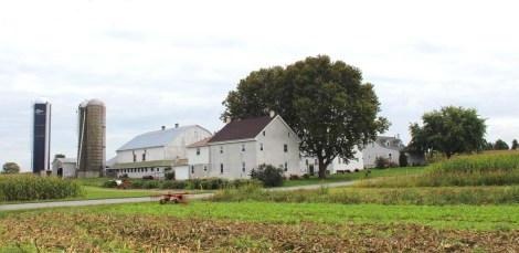 Amish Country, typical farm bldgs