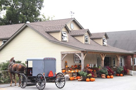 Amish store, horse & buggy