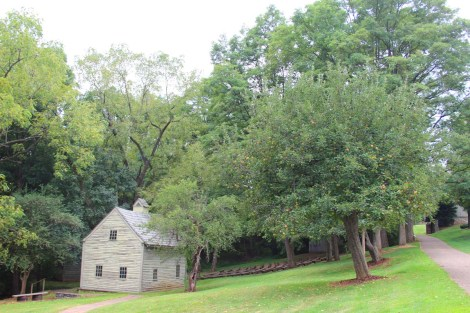 Ephrata Cloister apple tree and house