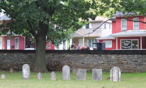 Ephrata Cloister cemetery, horses